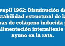 Chvapil 1962: Disminución de la estabilidad estructural de las fibras de colágeno inducida por la alimentación intermitente y el ayuno en la rata.